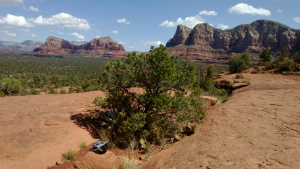 Bryan's tree on Bell Rock in Sedona, AZ