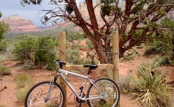 my-bike-2
